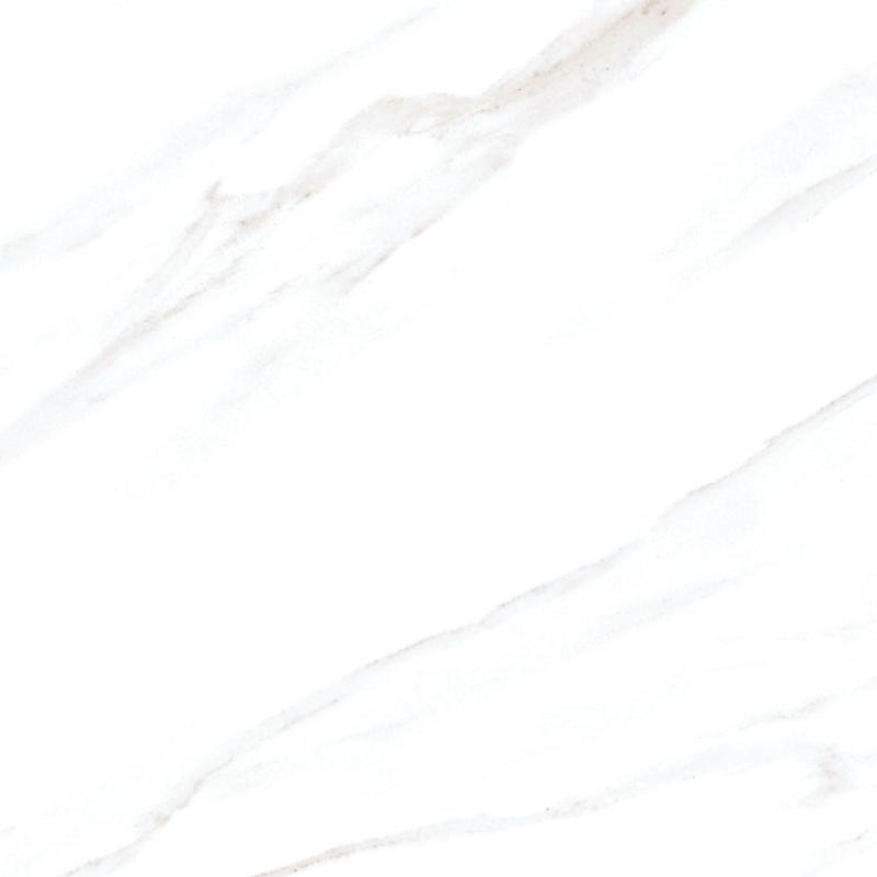 QH-J288159意大利星白