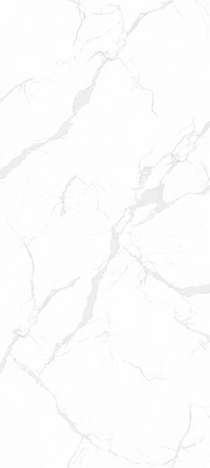SDG122712218A-意大利鱼肚白