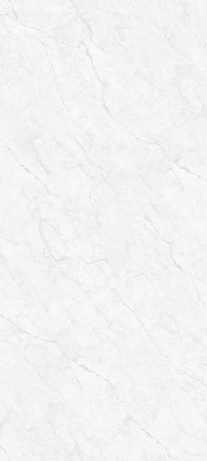 SDG122712219A-意大利细纹雪花白
